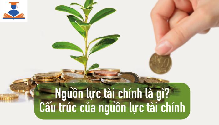Hinh-anh-nguon-luc-tai-chinh-la-gi-1