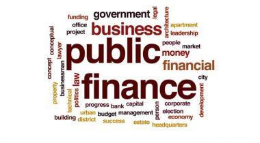 Hình ảnh tài chính công là gì 1