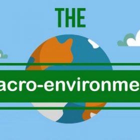 Hình ảnh phân tích môi trường vi mô 1